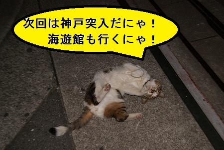 次回予告(神戸)