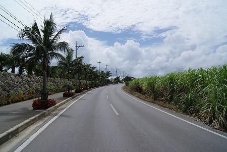 石垣島 道1