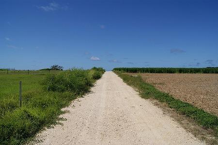 波照間島 道路