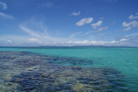 ニシ浜 海