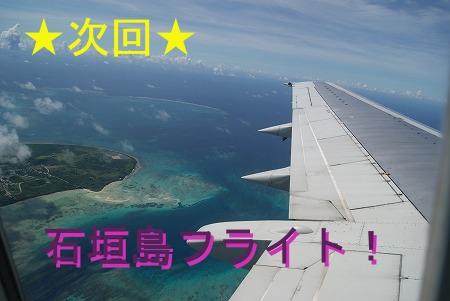 次回予告 石垣島