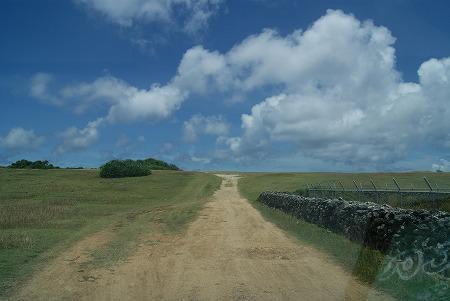 与那国島 道その1
