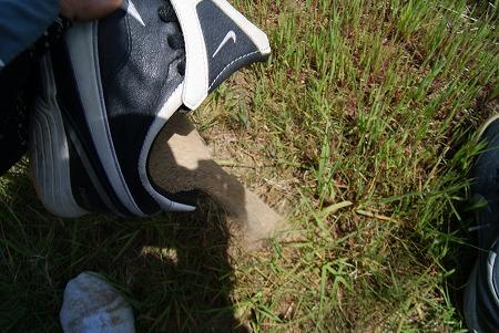 靴の中に砂 鳥取砂丘