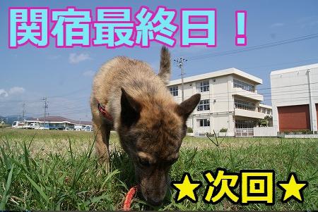 aaa_20101223022500.jpg