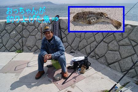 淡路島の釣り人