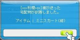 Maple110205_163916.jpg