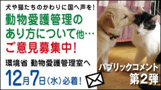 【拡散希望】5年に一度の動物愛護法改正に関して 情報まとめ