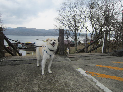 h25,3山中湖記念撮影