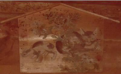 猫稲荷・社殿内05
