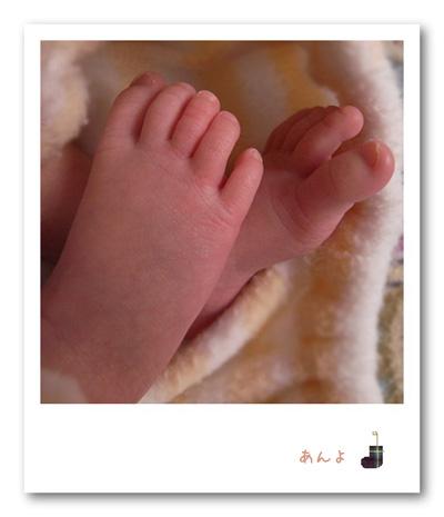 小さいのに土踏まずとかちゃんとあって感心。足の裏のつるんつるんが羨ましい。