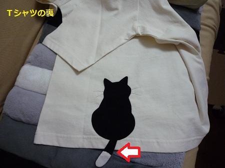 Tシャツ(白)裏
