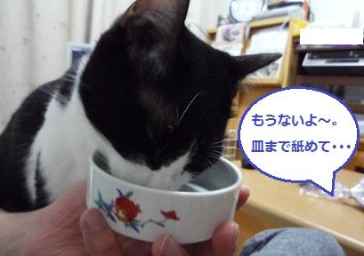皿を舐めるリュー