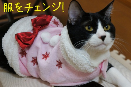 服をチェンジ!
