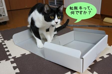 松阪牛って?