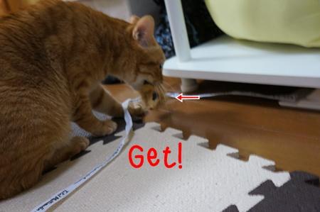 Get!.jpg