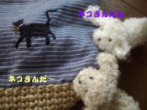 IMGP1259_convert_20110708163750.jpg