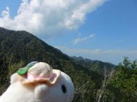 白カピと山