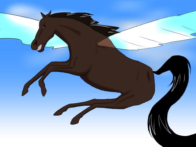 天空の勝利馬
