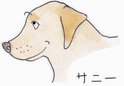 4.20 幸せサニー48