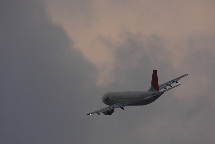 JAL A300-622R JAL130@RWY14Rエンド・猪名川土手(by 40D with SIGMA APO300/2.8EX DG+APO TC2x)