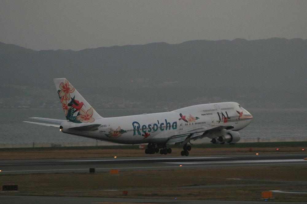 2007年1月7日・JAL B747-300@関西国際空港展望ホールSkyView(by EOS Kiss Digital X with EF90-300/4.5-5.6)