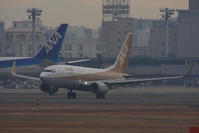 ANA B737-781 ANA521@RWY14Rエンド・猪名川土手(by 40D with SIGMA APO300/2.8EX DG+APO TC2x)