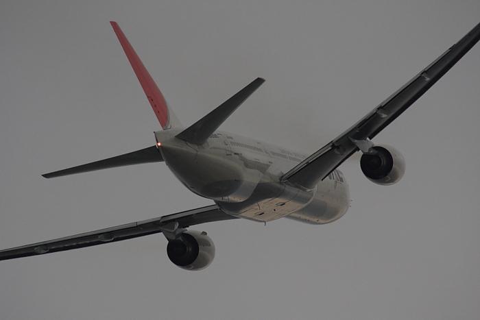 JAL B777-246 JAL102@エアフロントオアシス(by 40D with SIGMA APO300/2.8EX DG+APO TC2x)
