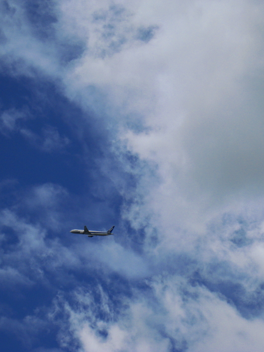 今日の昼の空&ANA B777-381 ANA105@会社屋上(by IXY DIGITAL 910IS)