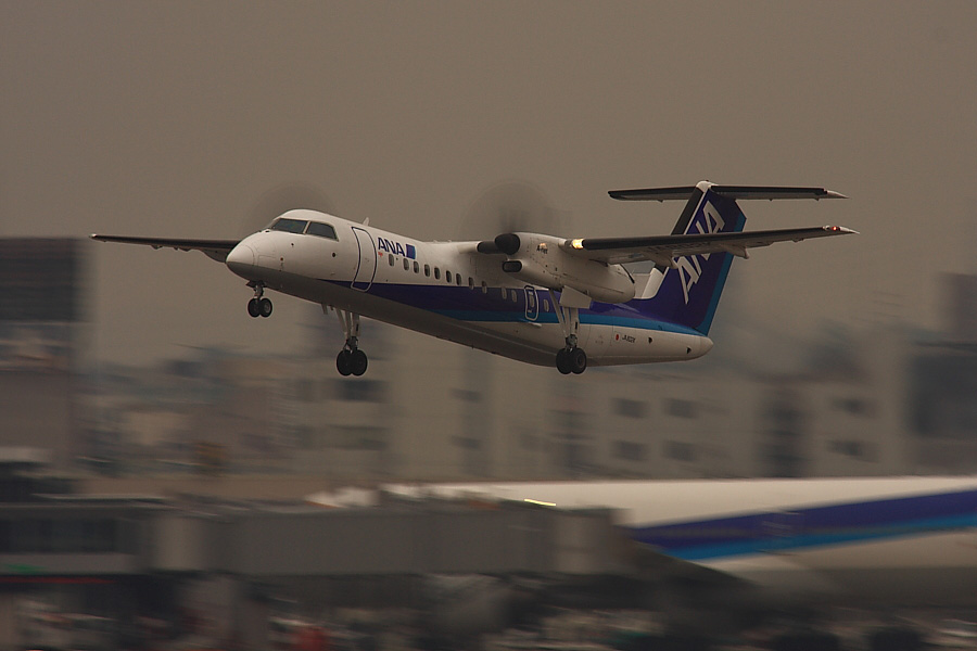 ANA DHC8-300 ANA1603@RWY14Rエンド道路脇(by EOS40D with SIGMA APO 300mm F2.8 EX DG/HSM+APO TC2x EX DG)