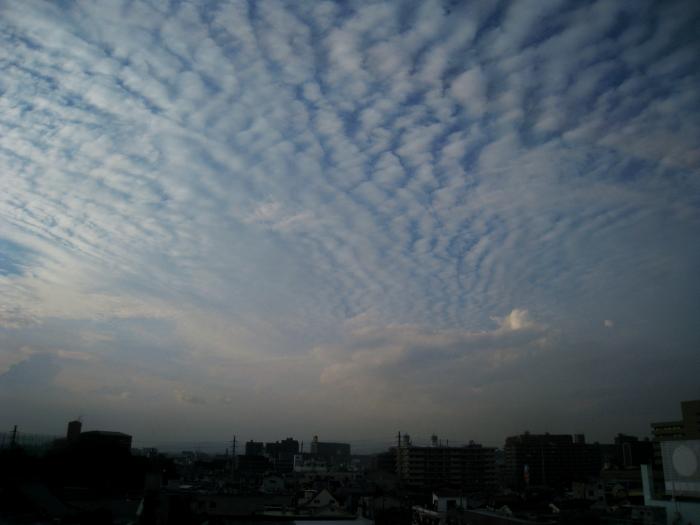 新幹線から見た大阪の空@のぞみ48号(by IXY DIGITAL 910IS)