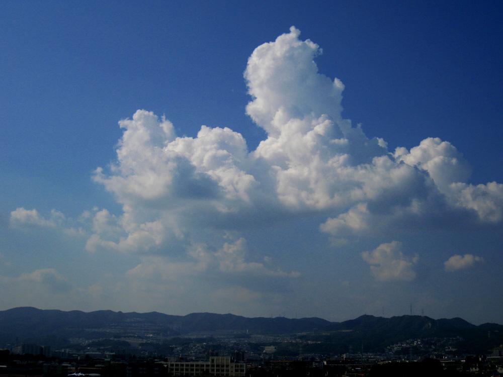 今日の昼下りの空(by IXY DIGITAL 910IS)