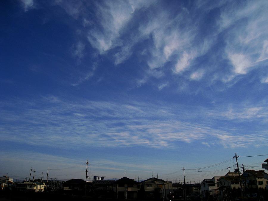 今朝の気持ち良い空@天神川土手(by IXY DIGITAL 910IS)