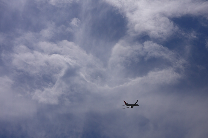 JEX B737-846 JAL3006@下河原緑地公園展望デッキ(by 40D with SIGMA 18-50/2.8EX DC)