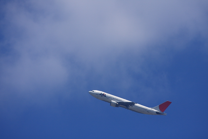 JAL A300-622R JAL114@伊丹市役所前歩道橋(by 40D with EF100-400/4.5-5.6L IS)