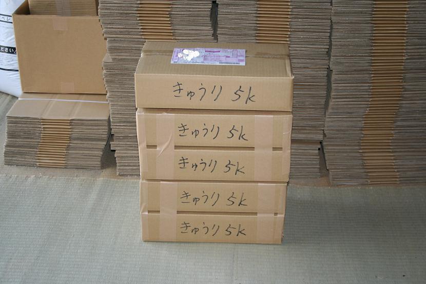 05151.jpg