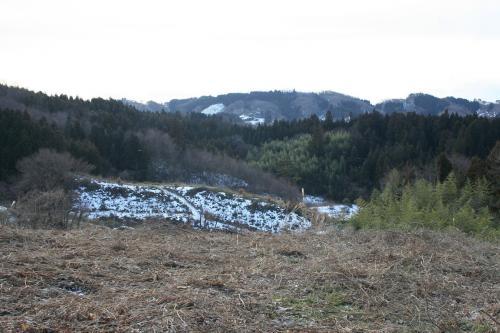 わらび園 冬 二本松農園