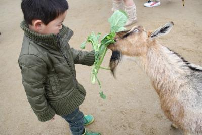 2010.03.28 動物園 082