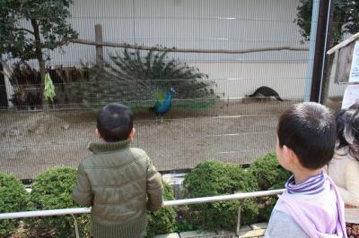 2010.03.28 動物園 024