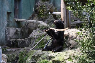 2010.03.28 動物園 216