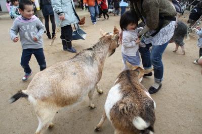 2010.03.28 動物園 098