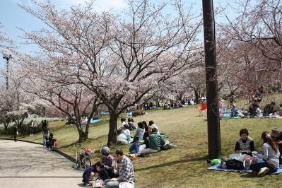 2010.04.04 鏡山公園 064