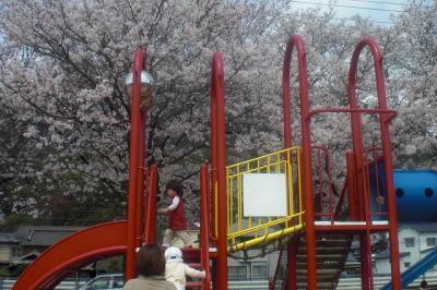 2010.04.06 石原公園 043