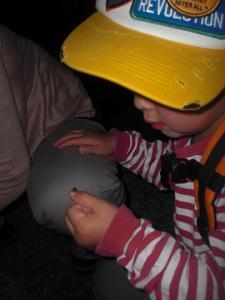 2010.06.13 だんご虫 047