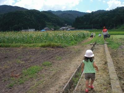 2010.08.07 浜田 002