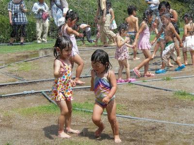 2010.08.10 噴水迷路 062