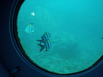 2010.09.04 沖縄旅行 027