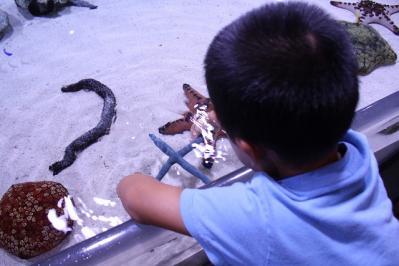 2010.09.05 沖縄旅行 044