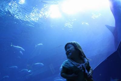 2010.09.05 沖縄旅行 041