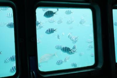 2010.09.06 沖縄旅行 098