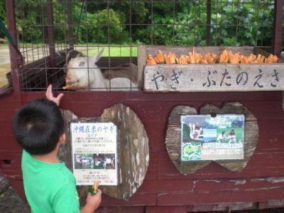 2010.09.06 沖縄旅行 047